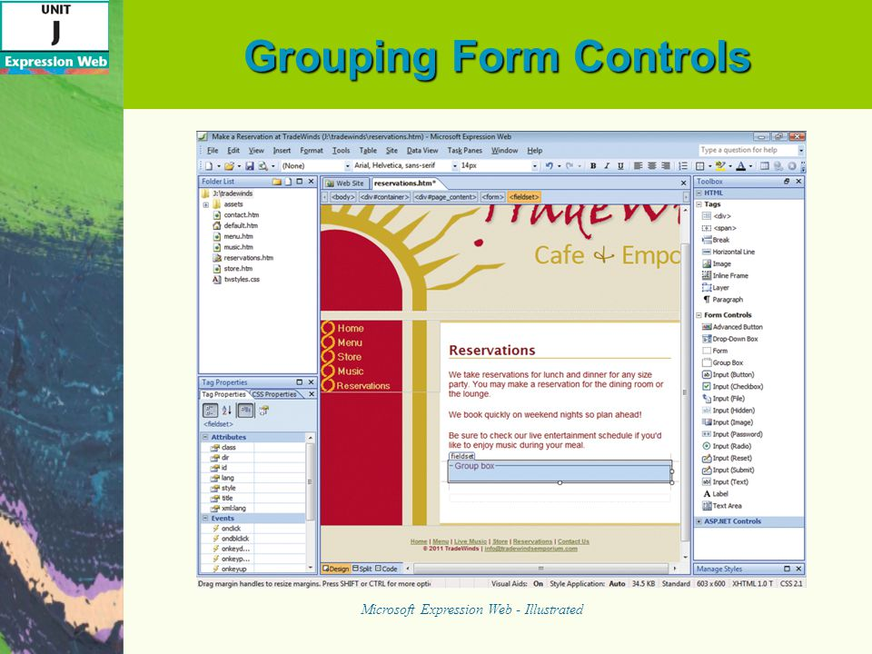 Grouping Form Controls Microsoft Expression Web - Illustrated