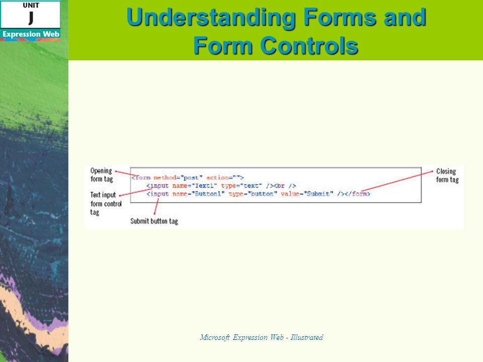 Understanding Forms and Form Controls Microsoft Expression Web - Illustrated Sample Form