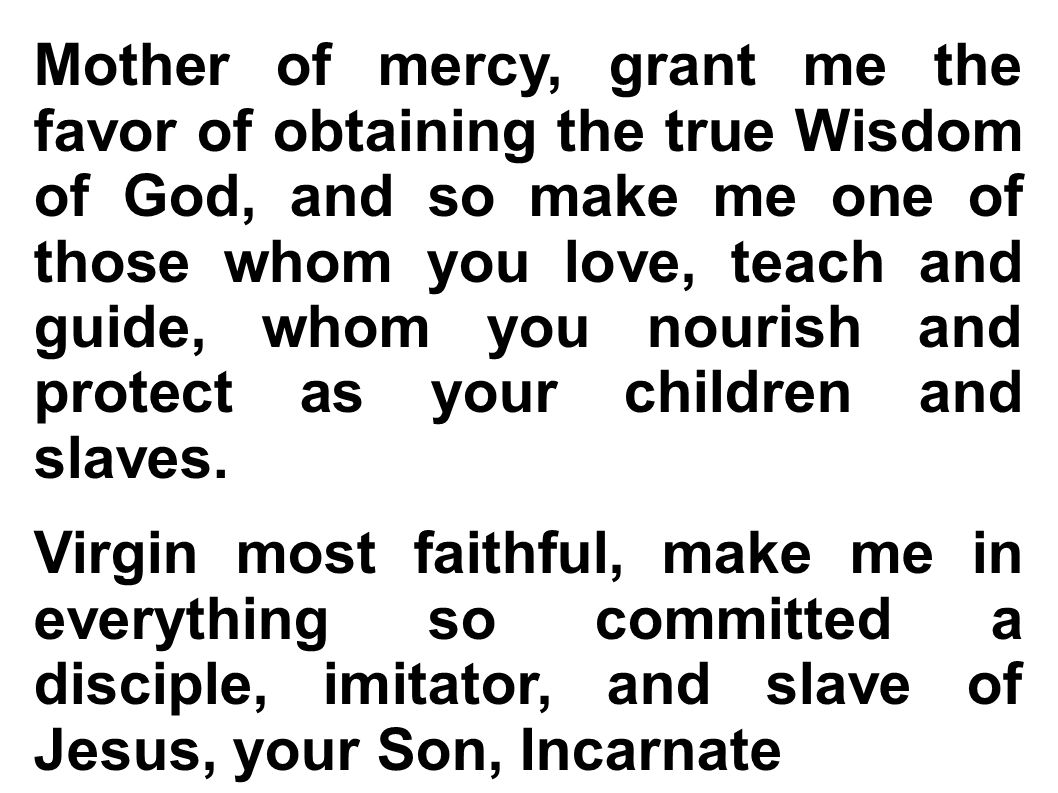 Mother of mercy, grant me the favor of obtaining the true Wisdom of God, and so make me one of those whom you love, teach and guide, whom you nourish and protect as your children and slaves.