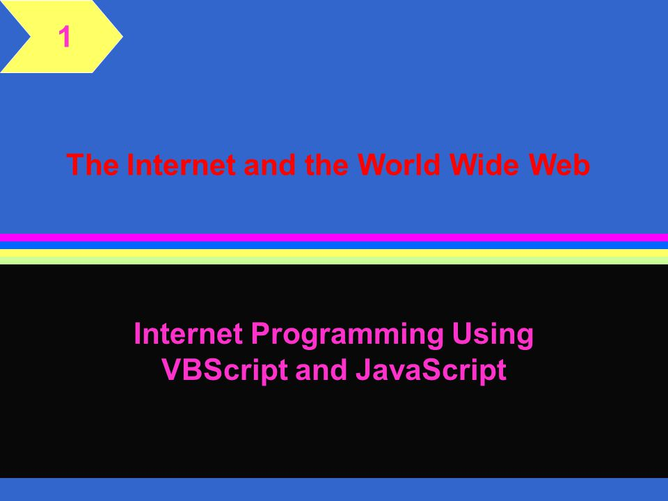 The Internet and the World Wide Web Internet Programming Using VBScript and JavaScript 1