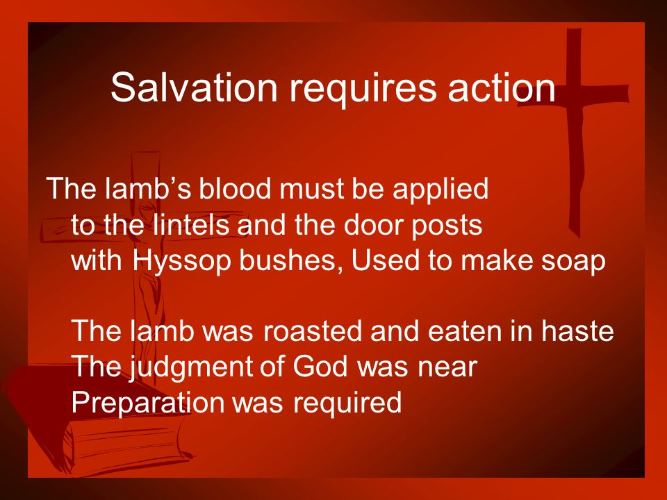 Salvation requires action The lamb's blood must be applied to the lintels and the door posts with Hyssop bushes, Used to make soap The lamb was roaste