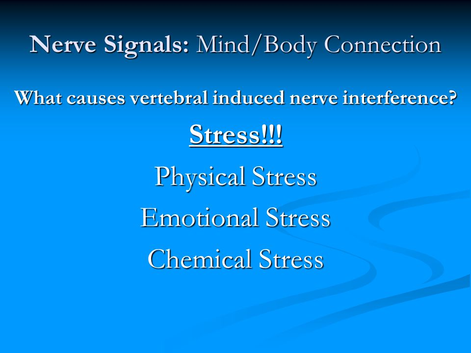 Nerve Signals: Mind/Body Connection What causes vertebral induced nerve interference? Stress!!! Physical Stress Emotional Stress Chemical Stress