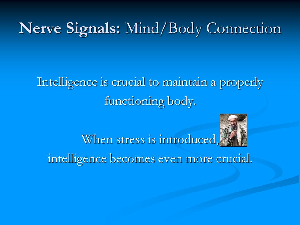 Nerve Signals: Mind/Body Connection Intelligence is crucial to maintain a properly functioning body.