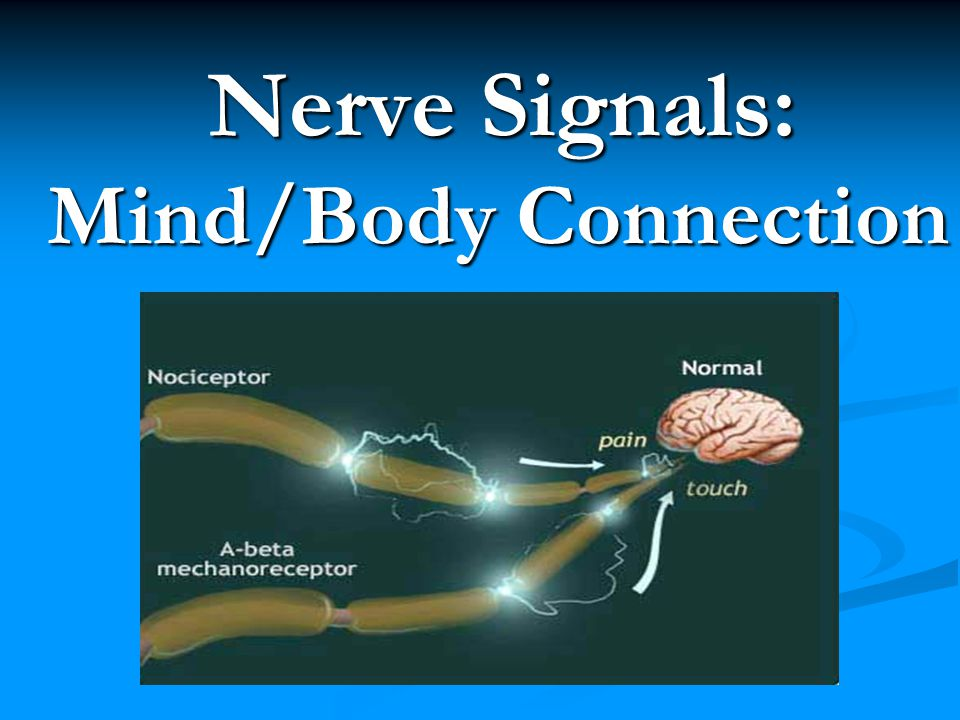 Nerve Signals: Mind/Body Connection What if the intelligence was interfered with at some point along the nerve pathway.