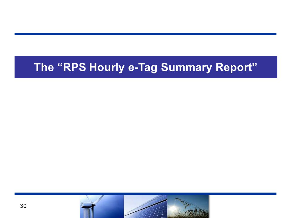 The RPS Hourly e-Tag Summary Report 30