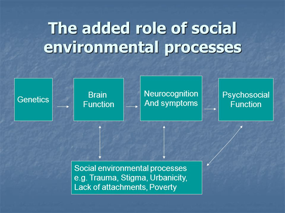 The added role of social environmental processes Neurocognition And symptoms Psychosocial Function Brain Function Genetics Social environmental processes e.g.