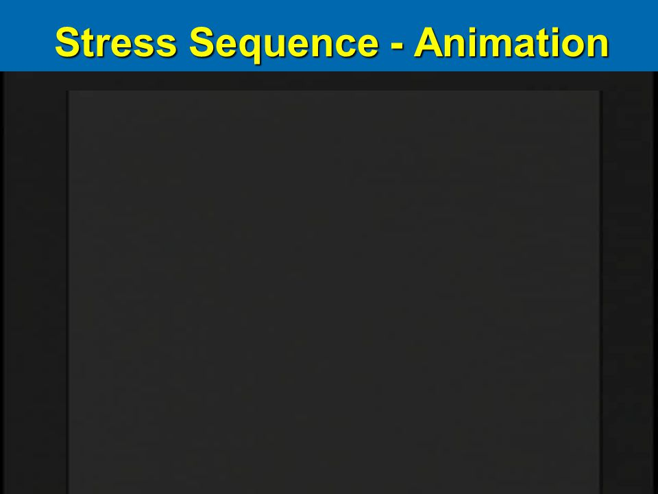 Stress Sequence - Animation