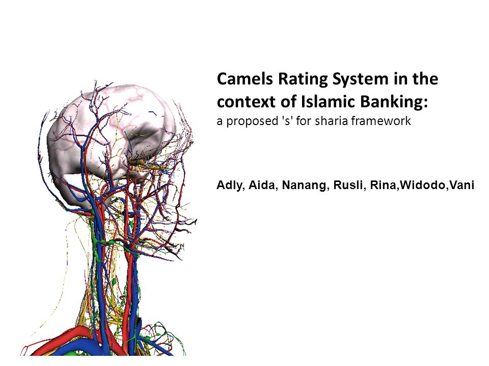 Camels Rating System in the context of Islamic Banking: a proposed 's' for sharia framework Adly, Aida, Nanang, Rusli, Rina,Widodo,Vani