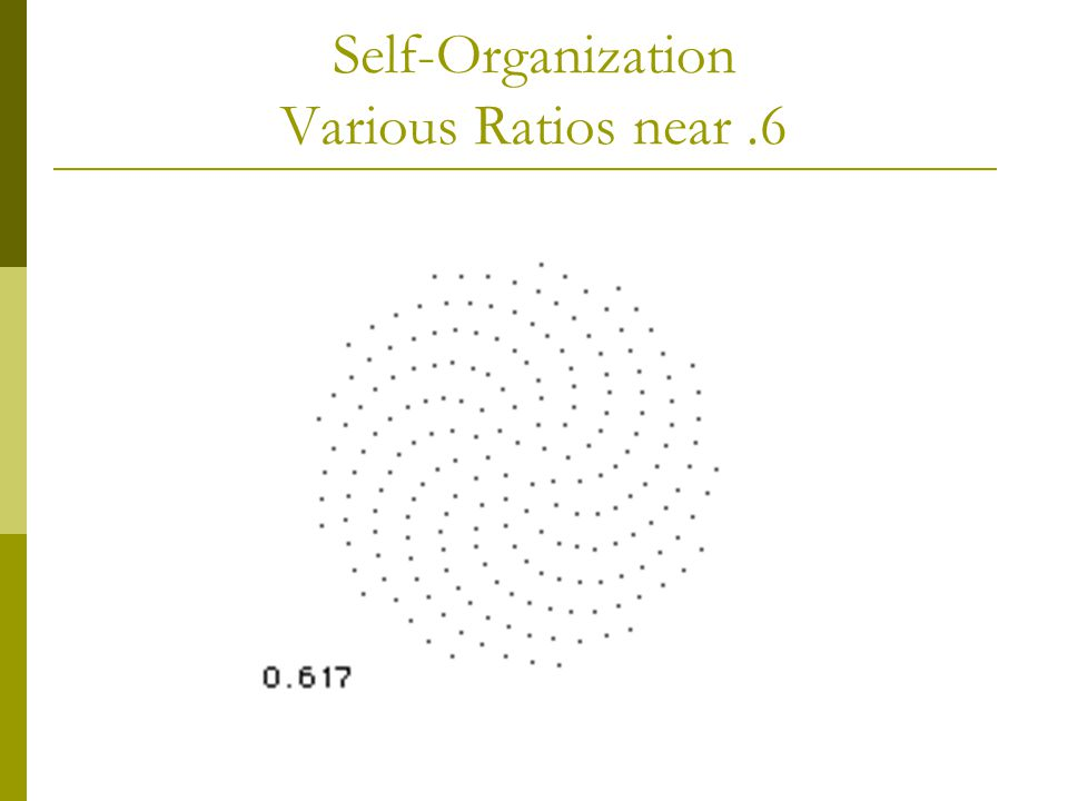 Self-Organization Various Ratios near.6