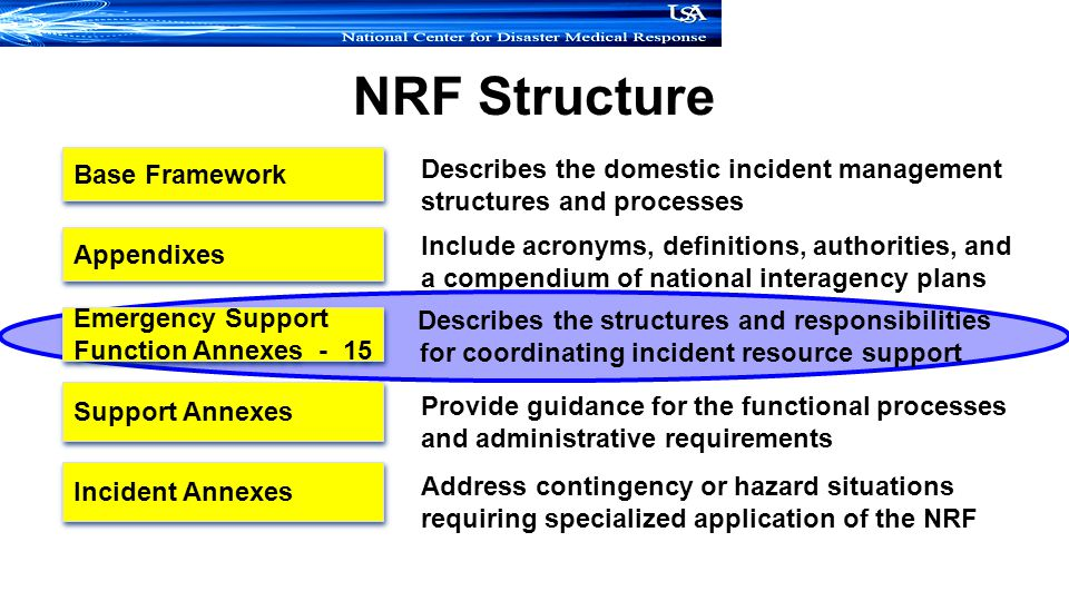 NRF Structure Support Annexes Incident Annexes Appendixes Base Framework Describes the domestic incident management structures and processes Include acronyms, definitions, authorities, and a compendium of national interagency plans Provide guidance for the functional processes and administrative requirements Address contingency or hazard situations requiring specialized application of the NRF Describes the structures and responsibilities for coordinating incident resource support Emergency Support Function Annexes - 15