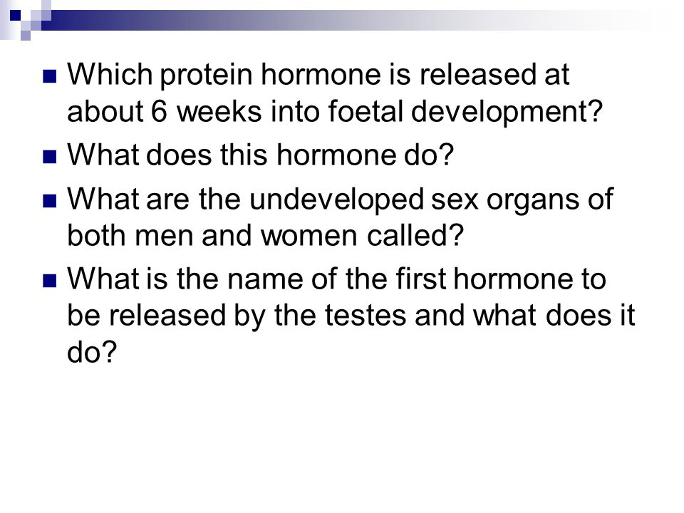 Which protein hormone is released at about 6 weeks into foetal development? What does this hormone do? What are the undeveloped sex organs of both men