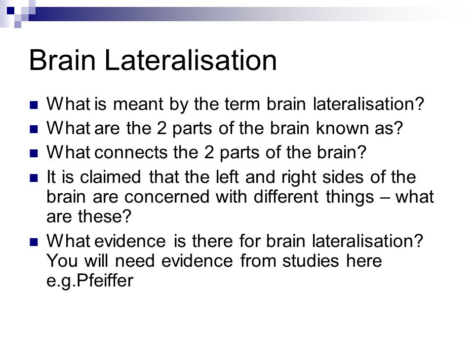 Brain Lateralisation What is meant by the term brain lateralisation? What are the 2 parts of the brain known as? What connects the 2 parts of the brai