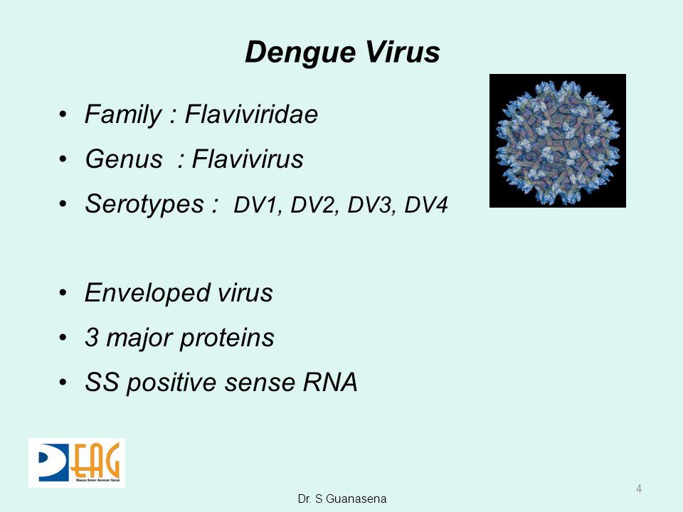 Dengue Virus Family : Flaviviridae Genus : Flavivirus Serotypes : DV1, DV2, DV3, DV4 Enveloped virus 3 major proteins SS positive sense RNA 4 Dr. S Gu