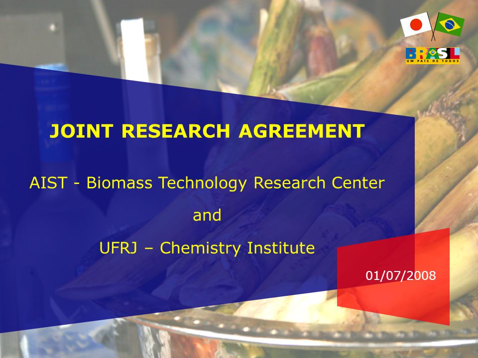 01/07/2008 JOINT RESEARCH AGREEMENT AIST - Biomass Technology Research Center and UFRJ – Chemistry Institute