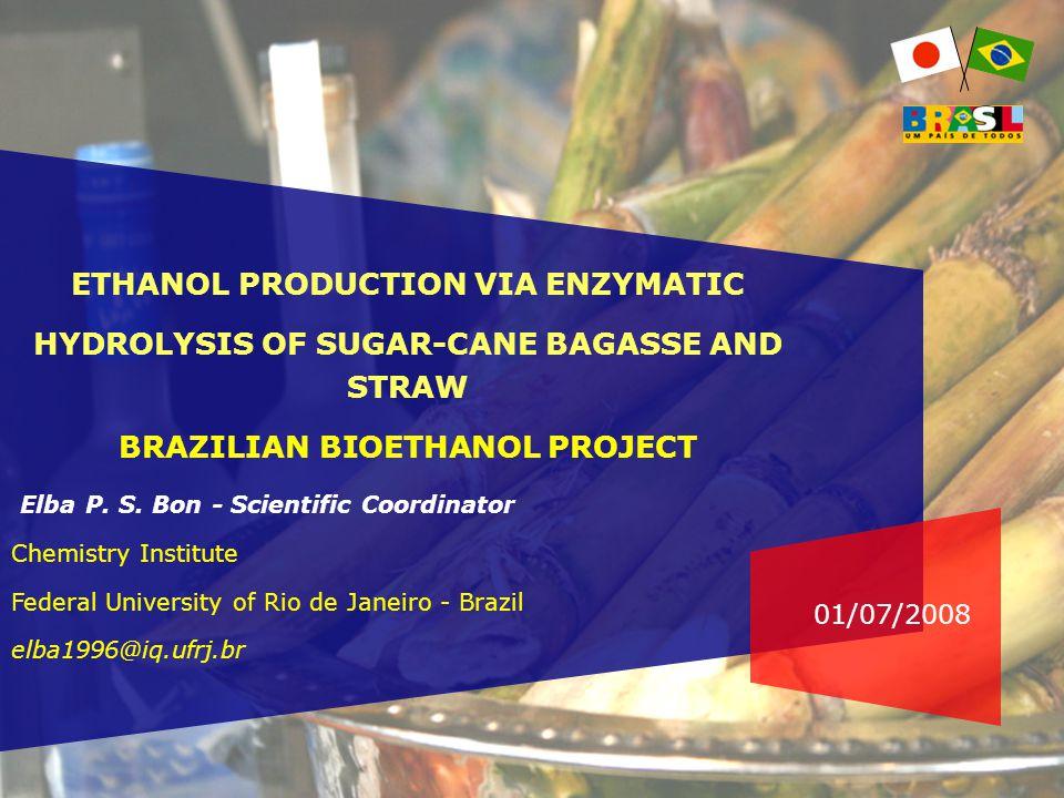 01/07/2008 ETHANOL PRODUCTION VIA ENZYMATIC HYDROLYSIS OF SUGAR-CANE BAGASSE AND STRAW BRAZILIAN BIOETHANOL PROJECT Elba P.