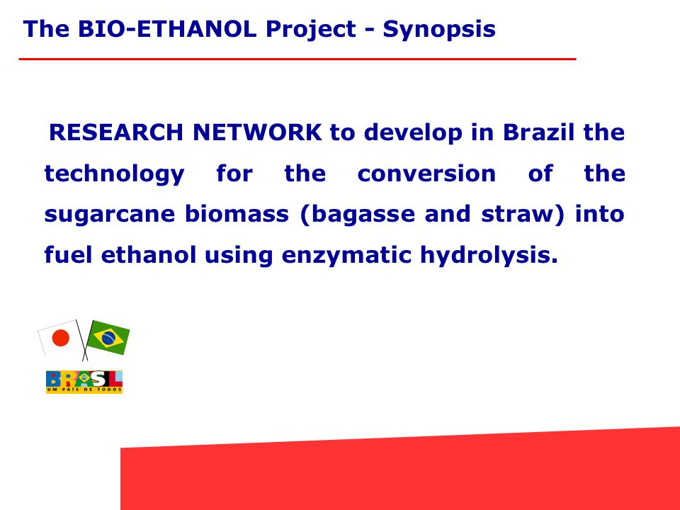 RESEARCH NETWORK to develop in Brazil the technology for the conversion of the sugarcane biomass (bagasse and straw) into fuel ethanol using enzymatic