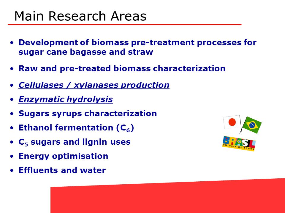 Development of biomass pre-treatment processes for sugar cane bagasse and straw Raw and pre-treated biomass characterization Cellulases / xylanases pr