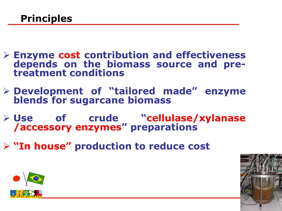 " Enzyme cost contribution and effectiveness depends on the biomass source and pre- treatment conditions  Development of ""tailored made"" enzyme blend"
