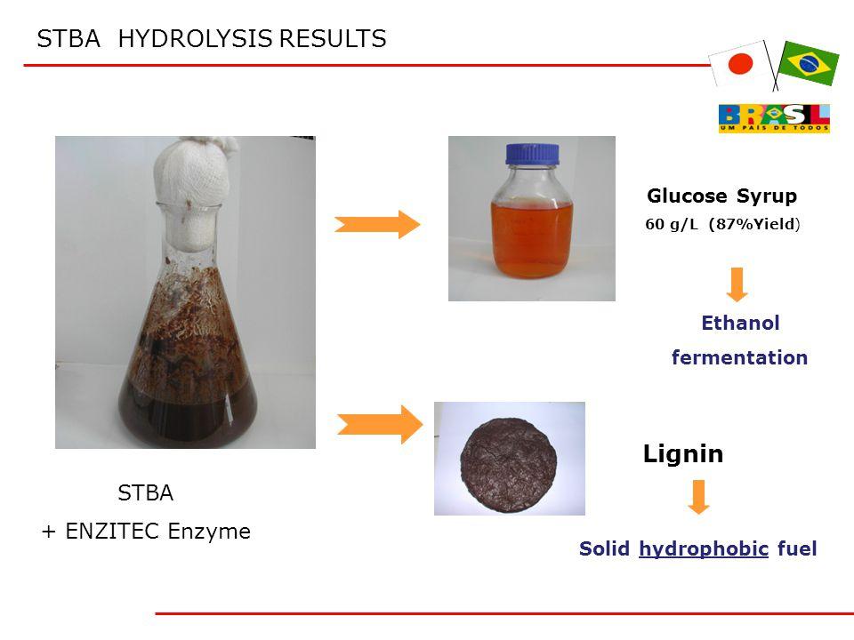 STBA HYDROLYSIS RESULTS STBA + ENZITEC Enzyme Glucose Syrup 60 g/L (87%Yield) Ethanol fermentation Lignin Solid hydrophobic fuel