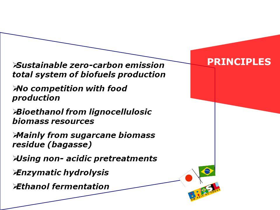 Sugarcane biomass hydrolysis using the ENZITEC enzyme blend