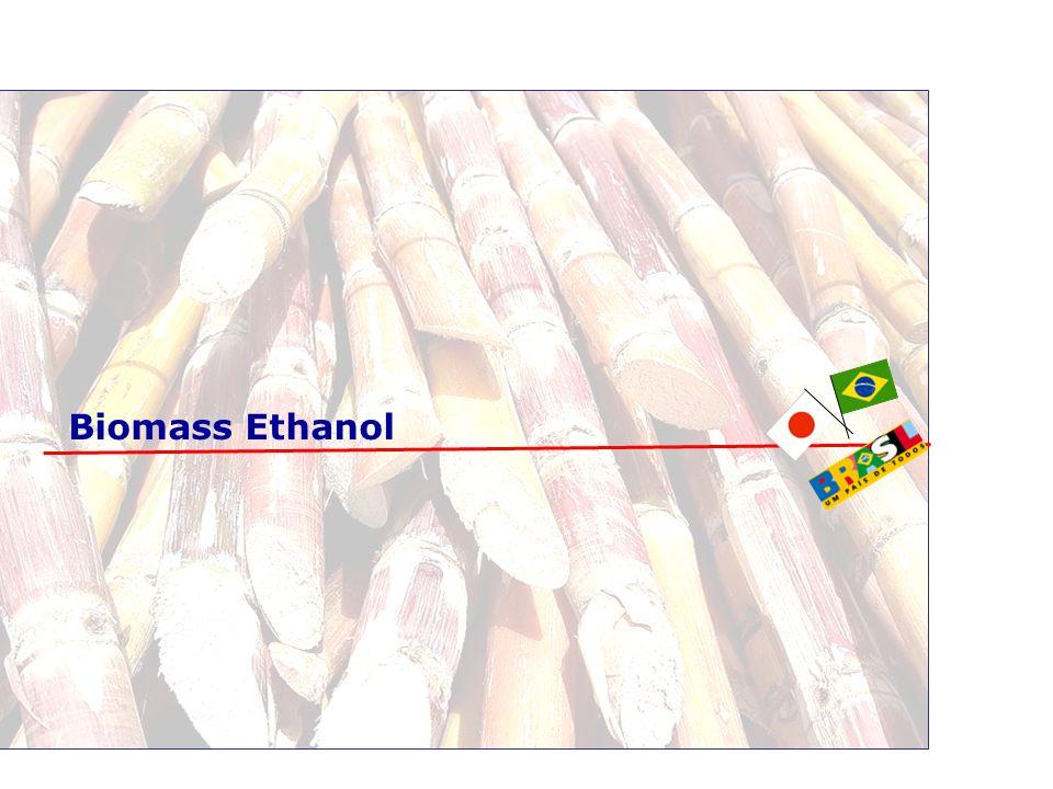 Biomass Ethanol