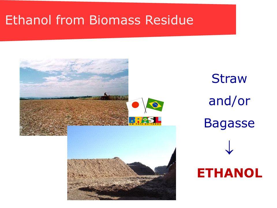 ENZYMATIC Saccharification Buffer treated corn stover Enzyme treated corn stover Acknowledgement NREL - USA
