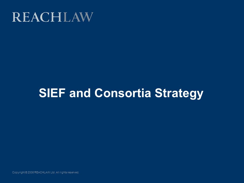 Copyright © 2008 REACHLAW Ltd. All rights reserved. SIEF and Consortia Strategy