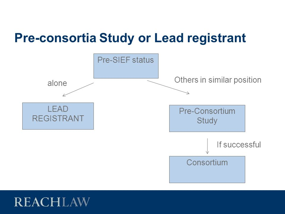 Pre-consortia Study or Lead registrant Pre-SIEF status alone LEAD REGISTRANT Others in similar position Pre-Consortium Study If successful Consortium