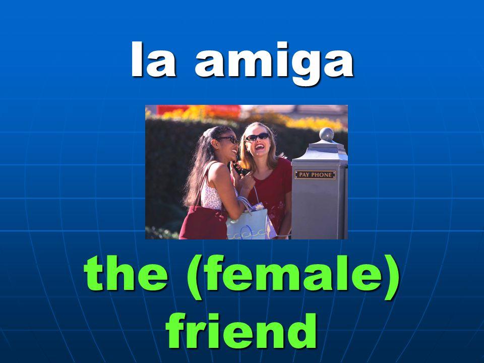 la amiga the (female) friend