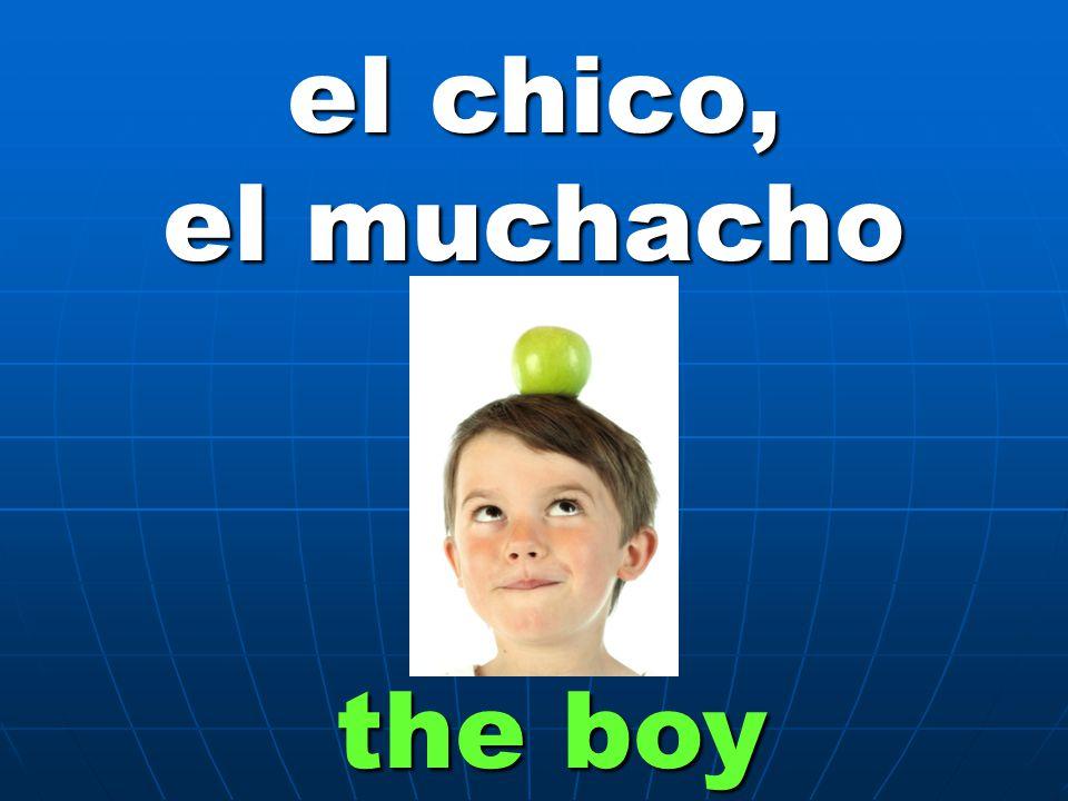 el chico, el muchacho the boy