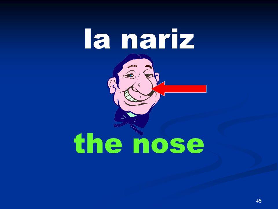 45 la nariz the nose