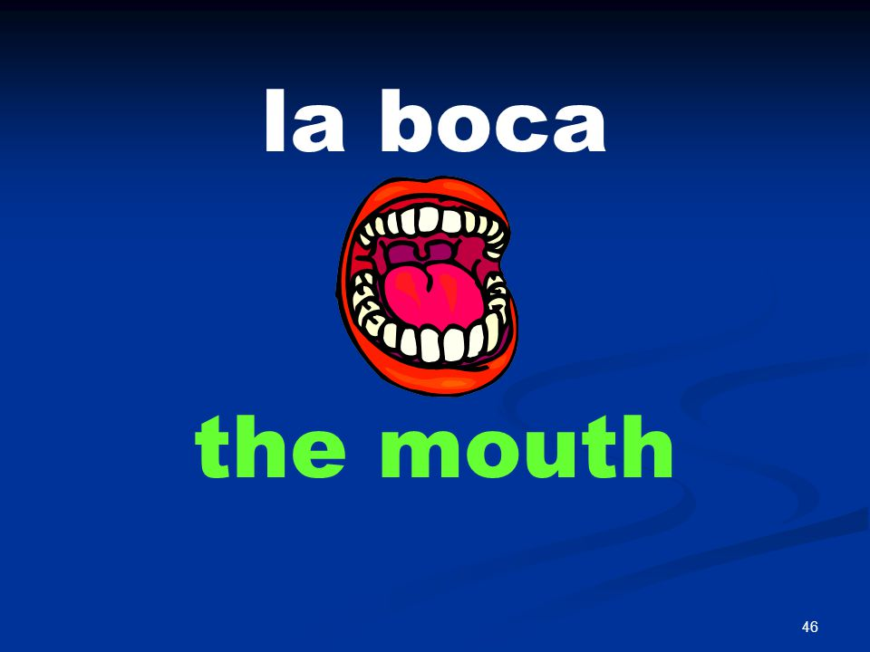 46 la boca the mouth