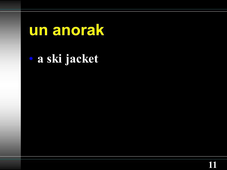 11 un anorak a ski jacket