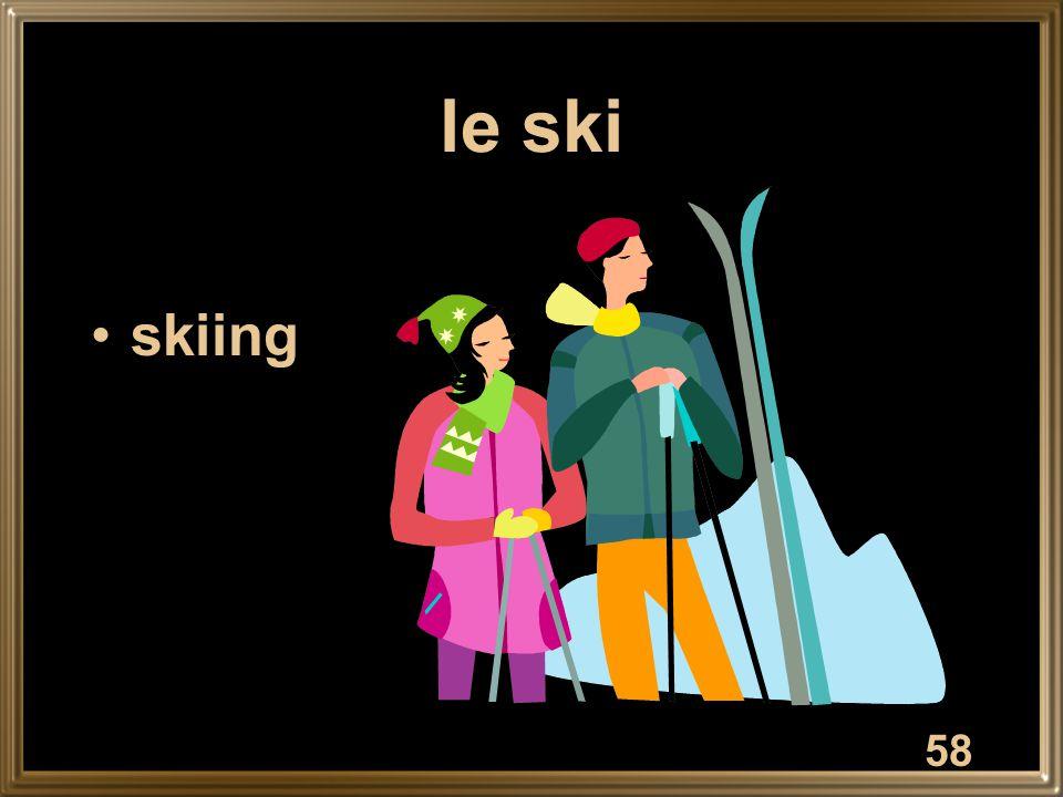 le ski skiing 58
