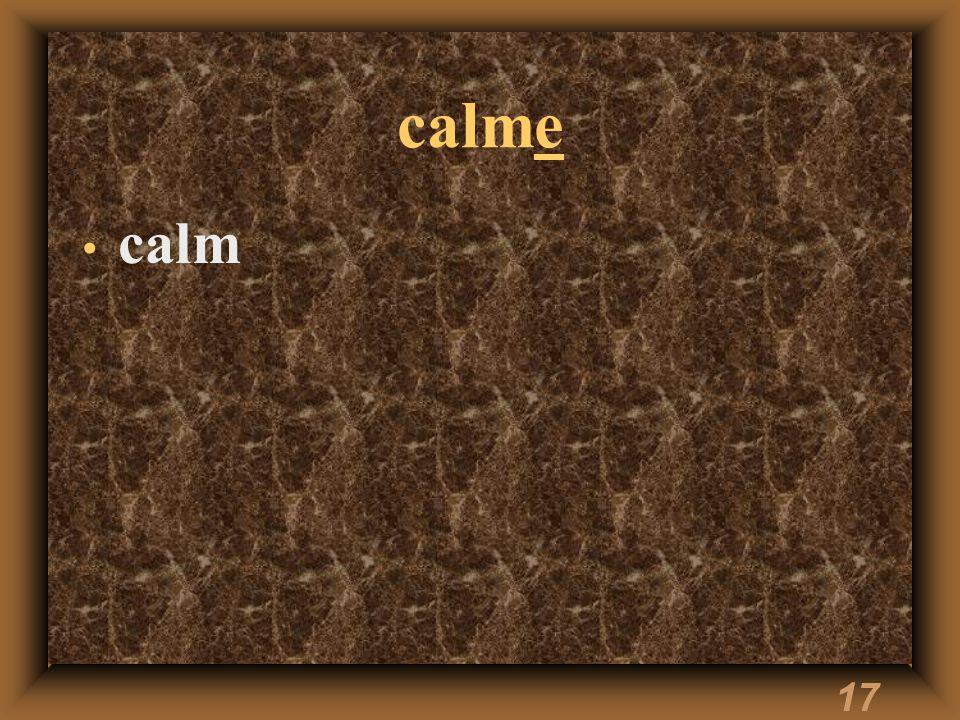 17 calme calm