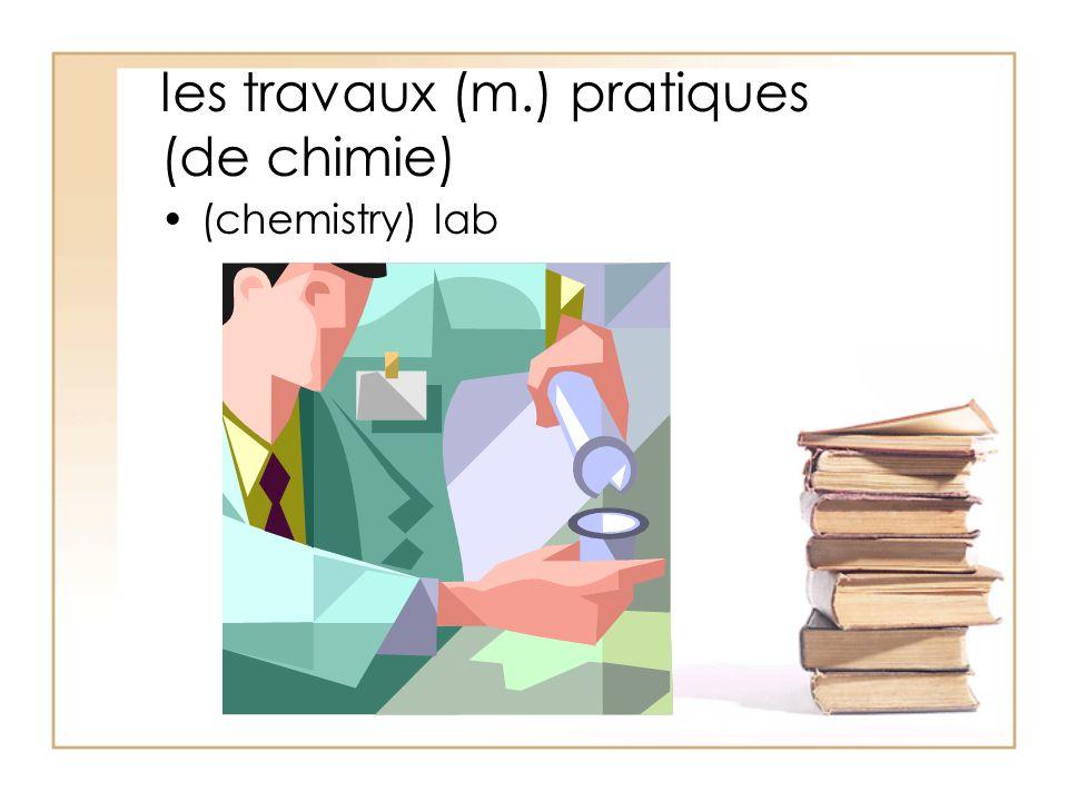 les travaux (m.) pratiques (de chimie) (chemistry) lab