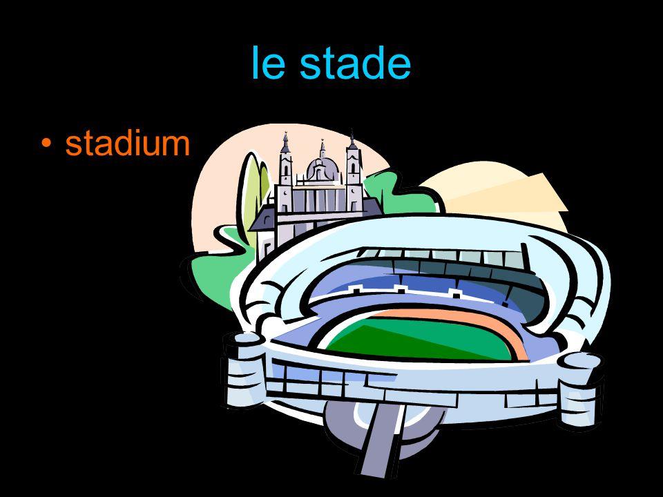le stade stadium