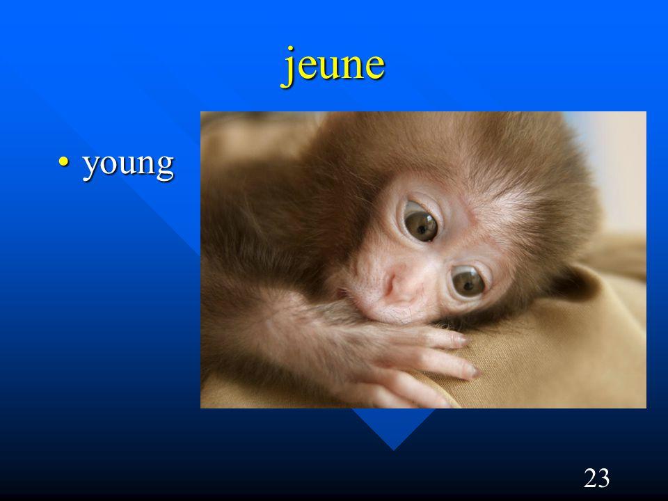 23 jeune youngyoung