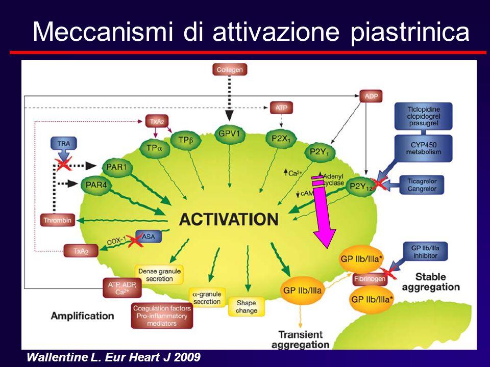 Meccanismi di attivazione piastrinica Wallentine L. Eur Heart J 2009