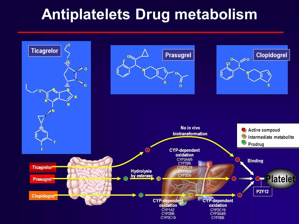 N S O O O F N F F S N O O N N N N O O N S O CI O Ticagrelor Prasugrel Clopidogrel Prasugrel Ticagrelor Hydrolysis by esterase CYP-dependent oxidation