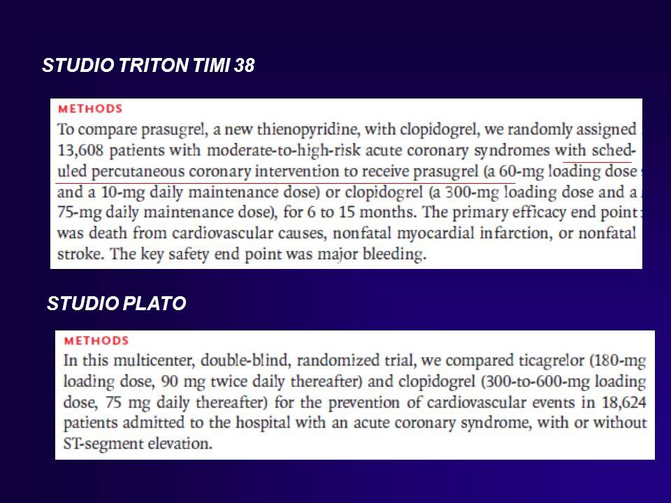 STUDIO TRITON TIMI 38 STUDIO PLATO