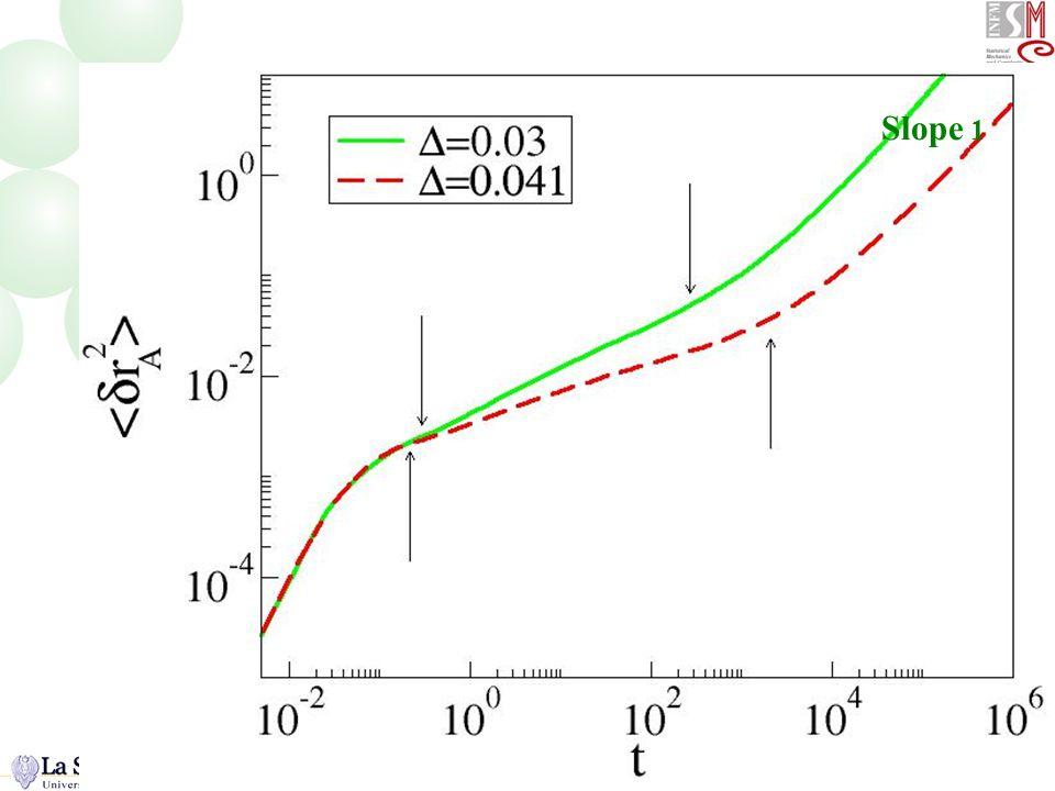 MSD logaritmico Slope 1