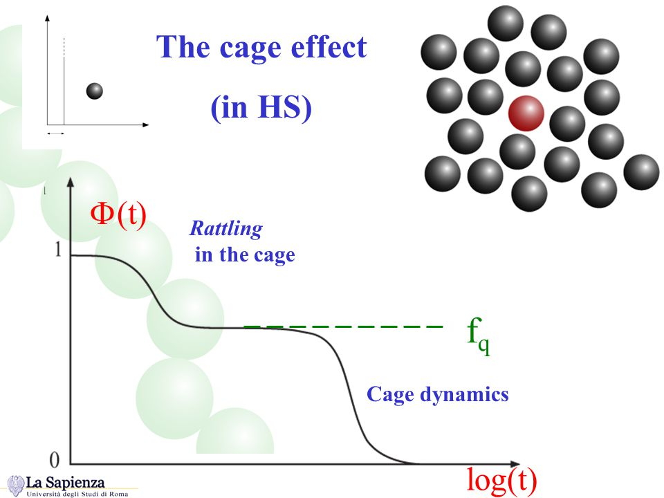 The cage effect (in HS) Explanation of the cage and analysis of correlation function Rattling in the cage Cage dynamics log(t)  (t) fqfq