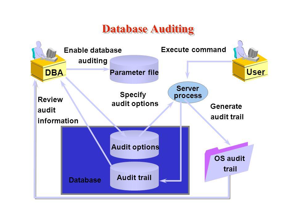 Database Auditing Parameter file Enable database auditing DBA Audit options Specify audit options Database User Execute command Server process Audit trail Generate audit trail OS audit trail Review audit information