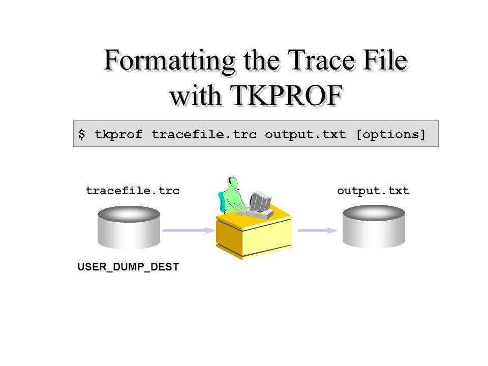 Al fine di prospettare le informazione storicizzate nel file di trace sopra descritto, occorre dare in pasto lo stesso archivio ad un formattatore denominato TKPROF la cui sintassi di avvio risulta essere: TKPROF file_trace_input file_output SORT=(option1,option2,……..)  EXECPU, EXEELA, ……….