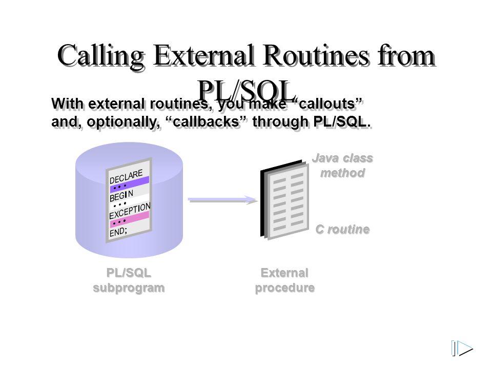 PL/SQL subprogram Calling External Routines from PL/SQL With external routines, you make callouts and, optionally, callbacks through PL/SQL.