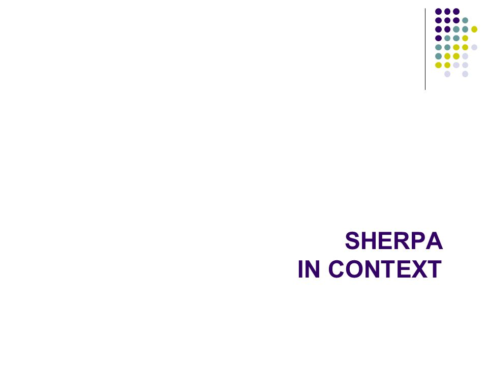 SHERPA IN CONTEXT 41