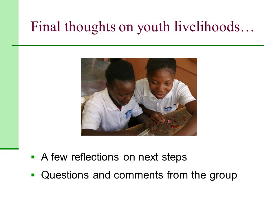 Final thoughts on youth livelihoods…  A few reflections on next steps  Questions and comments from the group