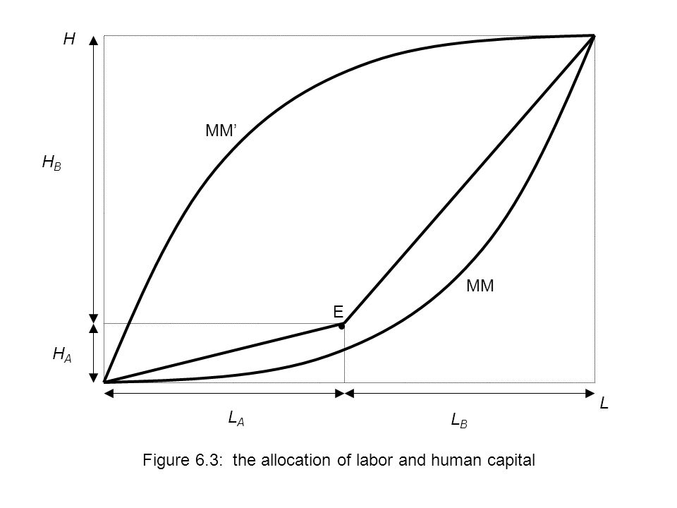L H Figure 6.3: the allocation of labor and human capital LBLB LALA HAHA HBHB MM MM' E
