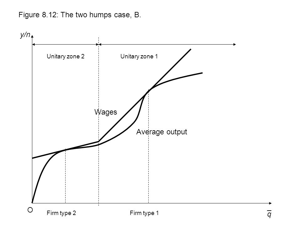 q y/n Figure 8.12: The two humps case, B. O ¯ Wages Unitary zone 1 Average output Unitary zone 2 Firm type 1Firm type 2